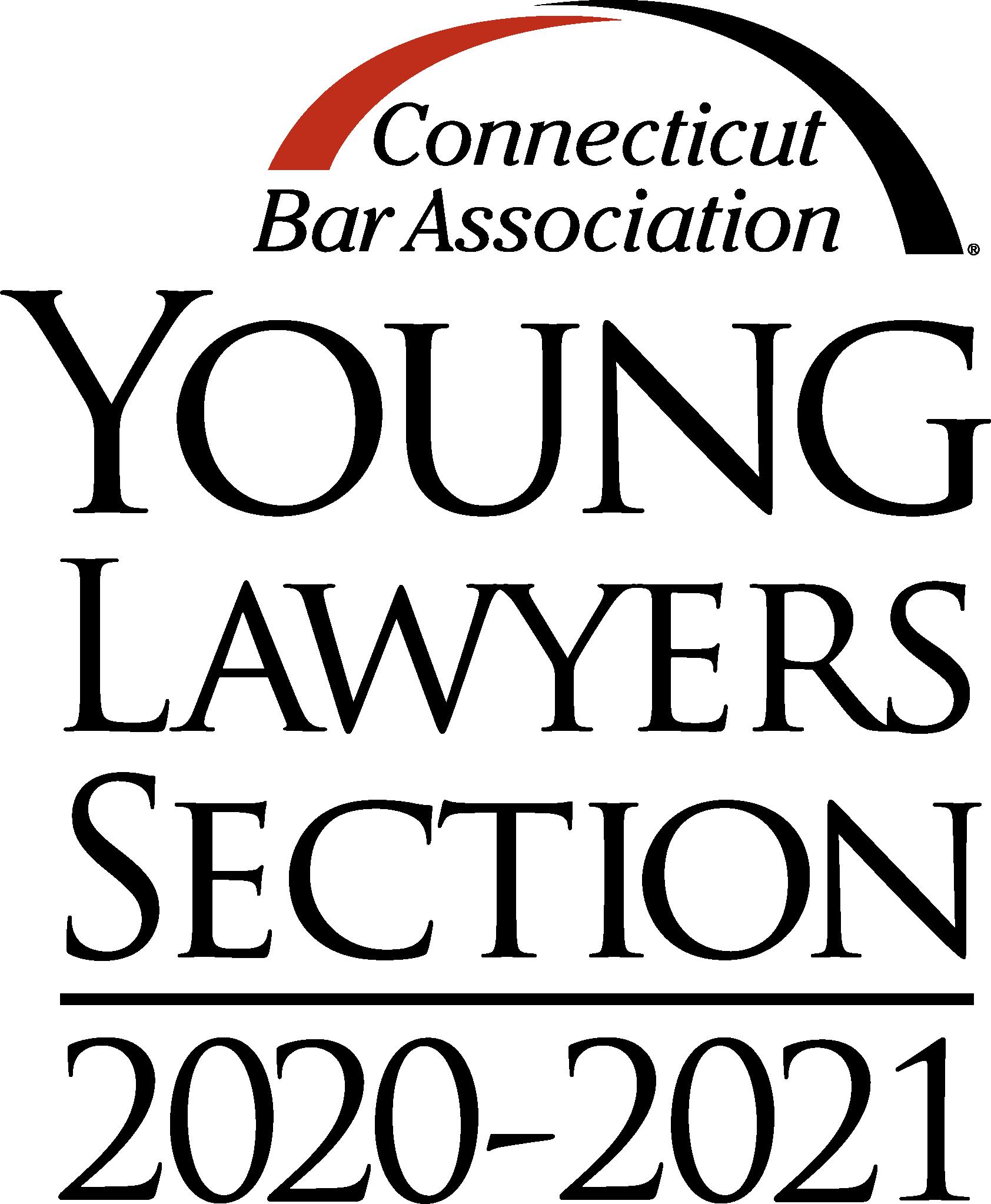 YLS 2020-21 logo